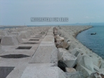 IMG00149-20121006-0326